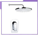 Remer One Handle Shower